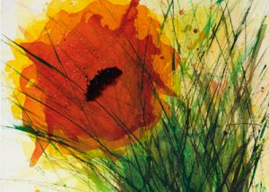Ingrid Studer Fineart | Blumen | Blümchen