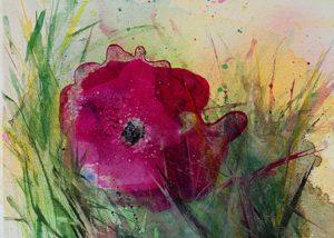Ingrid Studer Fineart | Blumen | Flower Power ll